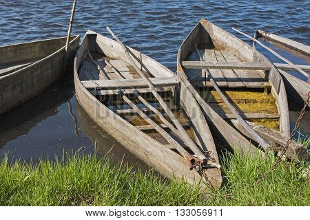 Row of wooden flat bottom boats, moored at the lagoon margin of Pateira de Fermentelos near Aveiro, Portugal