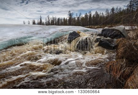 Rapid spring creek in South Yakutia Russia