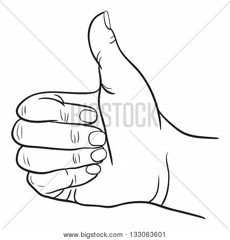 Vector Illustration of hand victory and O.K. Symbol