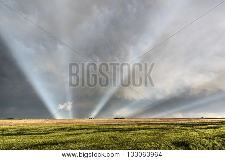 Anticrepuscular rays over the fields