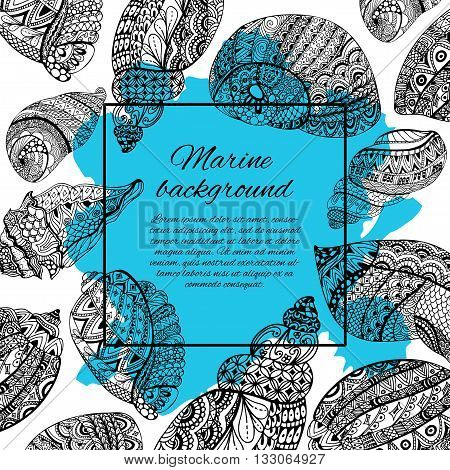 Hand drawn sea shells design for postcard banner card. Vector background with sea shell doodle elements. Sketch illustration