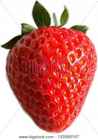 Strawberry - a single strawberry with a transparent background