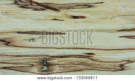 Old Wood texture - Mapple tree - Stabilised wood