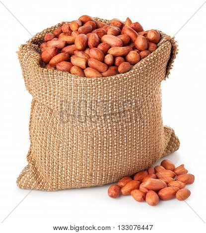Peanut or groundnut in burlap bag with heap isolated on white background. Peanut in sack on white background. Full burlap bag of peanuts