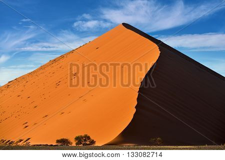 Beautiful landscape with dune 40 and trees at sunrise Sossusvlei Namib Naukluft National Park Namibia