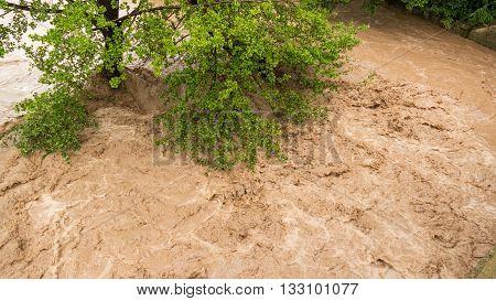 Closeup of wild turbulent river rapid, dangerous flooding