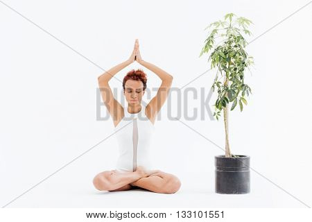 Attractive african american young woman sitting in lotus pose and practicing yoga near small tree in pot over white background