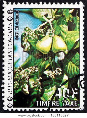 COMOROS - CIRCA 1985: a stamp printed in Comoros shows Cashews Tropical Fruit circa 1985