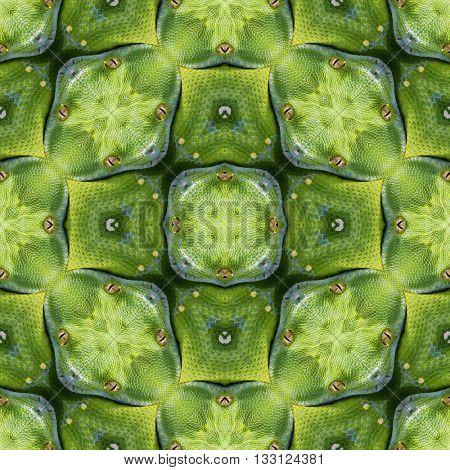 Snake Skin Seamless Texture Pattern