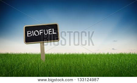 Single black chalkboard sign with white biofuel text in green grass under clear blue sky background. 3d Rendering.