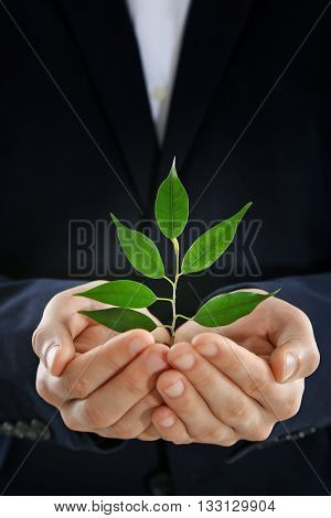 Hands holding plant sprouting from a handful of coins on white background