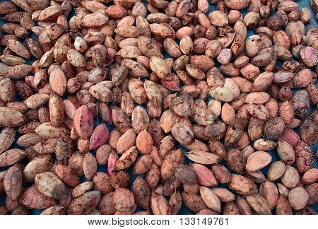 Plenty of walnuts. Raw food texture. Nuts texture background.