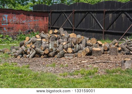 A pile of firewood in the yard.