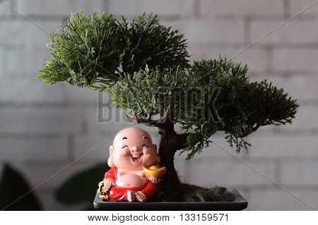Laughing Buddha figurine underneath a bonsai tree