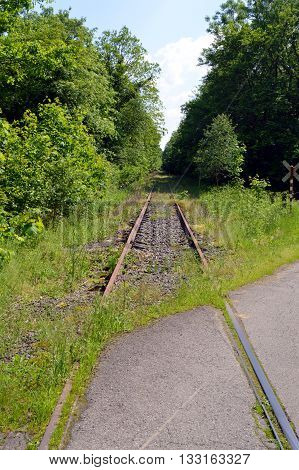 Abandoned railroad track taking off through the forest.