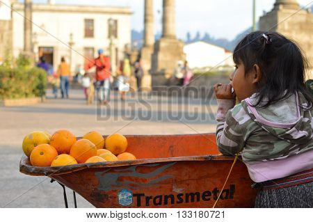 Quetzaltenango, Guatemala - February 9, 2015: Little Maya girl stands by a trolley full of oranges on February 9, 2015 in Quetzaltenango, Guatemala