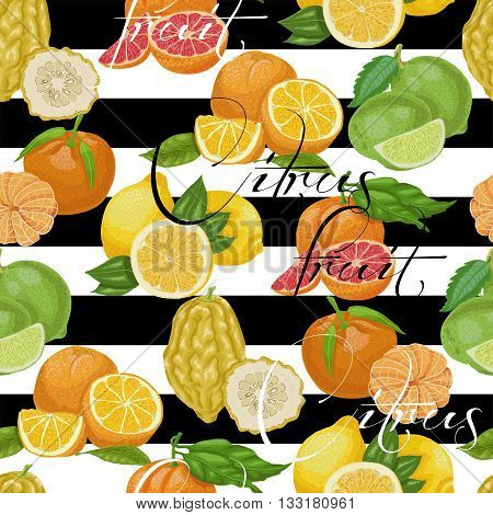 Seamless pattern with citrus fruit on a white and black background. Vector illustration for your design