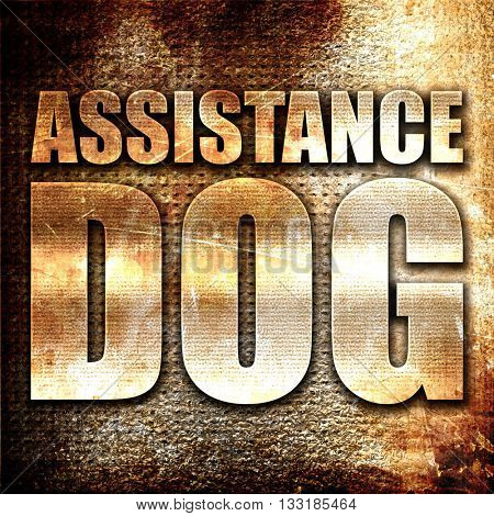 assistance dog, 3D rendering, metal text on rust background