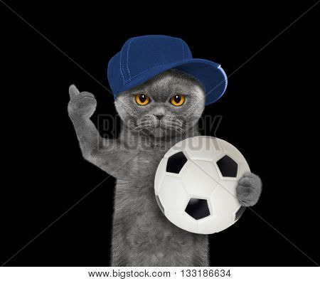 Cat in cap with a ball -- isolated on black background