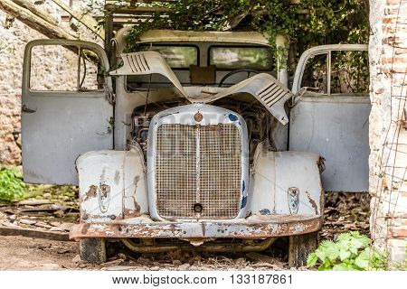 Old car in flower garden with vines