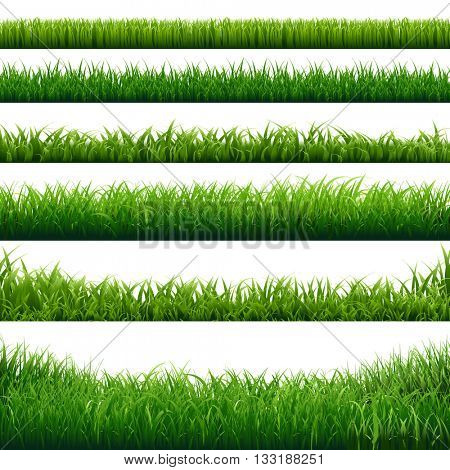 Green Grass Big Borders Collection, Isolated  Background, Vector Illustration