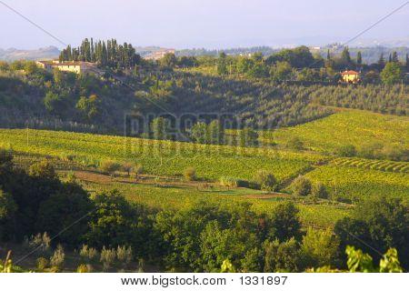 Classic Tuscany Farmhouse