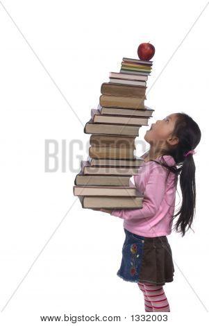 Serie de Educación (cielo libros alta)