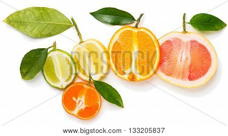 Top view of slices citrus fruits (orange lime grapefruit clementine and lemon) with green leaves isolated on white background.