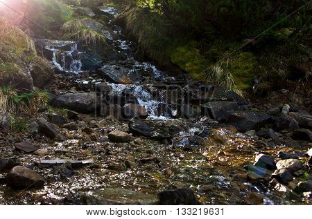Mountains stream through rocky mountains. Carpathian mountains