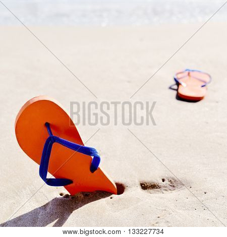 closeup of a pair of colorful orange flip-flops with blue straps on the sand of a beach