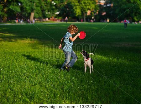 The boy of 8-9 years trains the dog. He holds frisbee in hand. The dog looks at frisbee having opened a mouth and having raised a tail up.On a green grass of a shadow from big trees.