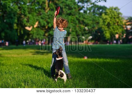 The curly boy of 8-9 years plays with the dog.The boy stand on a green lawn in park. He has raised a hand with frisbee up. The beautiful doggy of a black-and-white color stand on hinder legs.