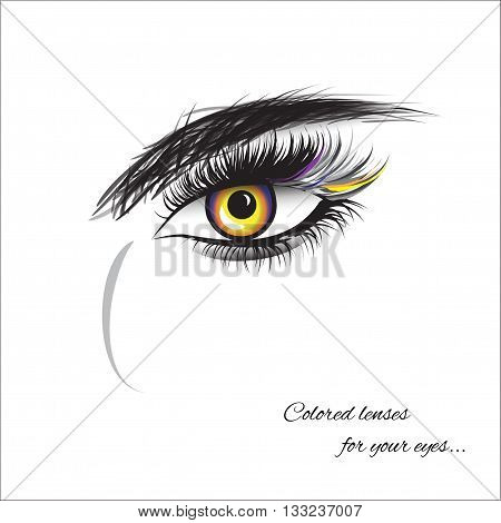 eye with thick lashes. Color contact lenses. Hand drawing lettering fashion beauty sketch