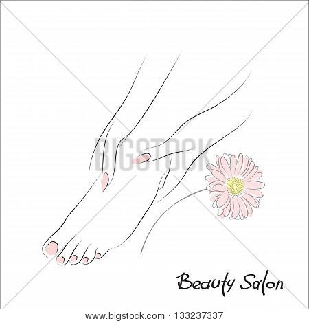 Pedicure banner with female feet and pink nails. Foot spa vector illustration or foot massage logo. Design spa template with gerbera flower. Body care health and wellness concept
