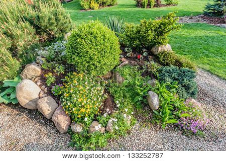 Landscaped summer garden with green plants, rocks, various flowers in flowerbeds, mown grass.