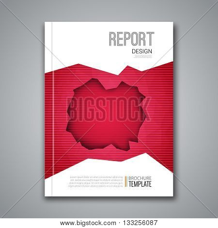 Cover Report Business Colorful Red Polygonal Hole Geometric pattern Design Background, Cover Magazine, Brochure Book Cover Template, vector illustration.