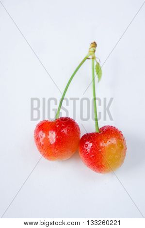 Two cherry fruit on the tail isolated on white