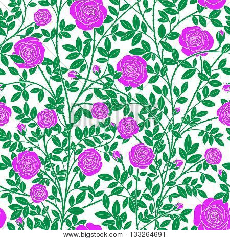 Seamless texture in the form of violet roses with green stems