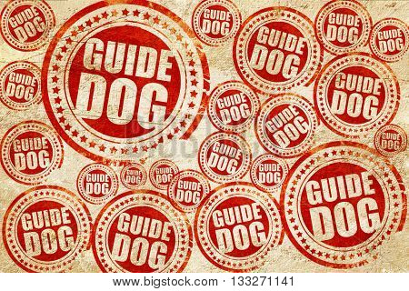 guide dog, red stamp on a grunge paper texture