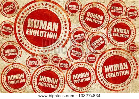 human evolution, red stamp on a grunge paper texture
