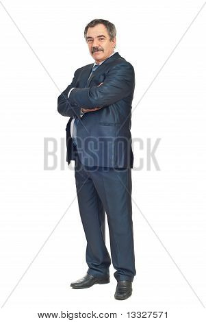Elegant Mature Business Man