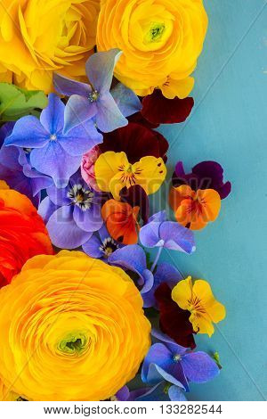 Fresh Flowers Background on Blue - ranunculus, pansies and hortensia