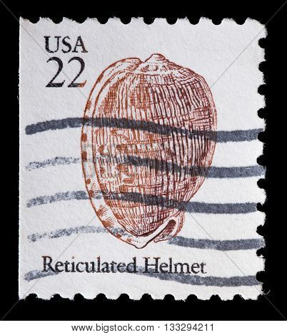United States Used Postage Stamp Showing A Sea Snail Shell