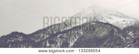 Panorama view of distant mountain peak covered by clouds and snow under overcast sky with conifer trees in the foreground