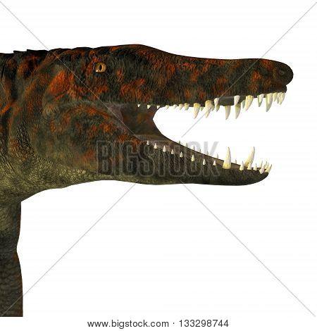 Uberabasuchus Dinosaur Head 3D Illustration - Uberabasuchus was an archosaur carnivorous crocodile that lived in the Cretaceous Period of Brazil.