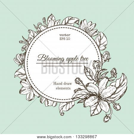 Vintage card with garden flowers. Hand drawn apple tree flowers. Vector illustration blooming branches cherry pear flower sakura. vector background of apple blossom