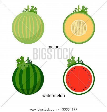 Nice Watermelon and melon and their cross-sections