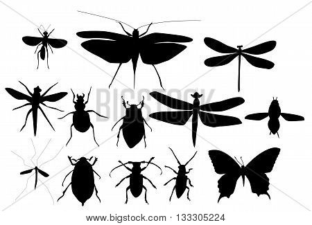 Silhouettes Set of Beetles, Dragonflies and Butterflies Vector Illustration EPS10