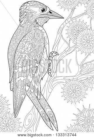 Zentangle stylized cartoon woodpecker on tree branch among snowflakes. Hand drawn sketch
