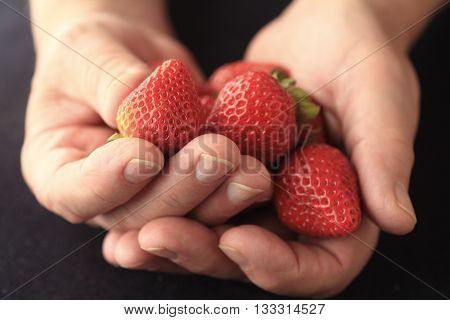 A man holds fresh strawberries in both hands.